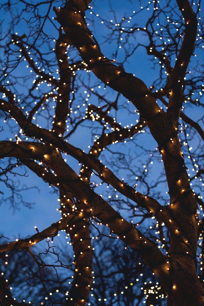 buy festoon lights & fairy lights from Festoon Lighting Sydney